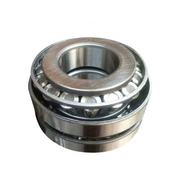 190 mm x 290 mm x 75 mm  NBS SL183038 cylindrical roller bearings