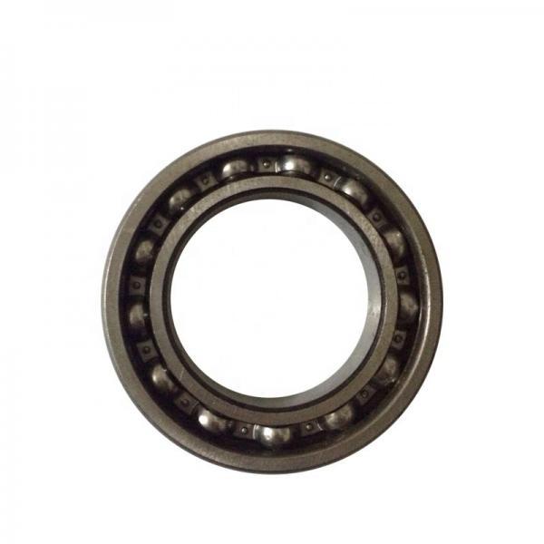 nsk 6006du6 bearing #3 image